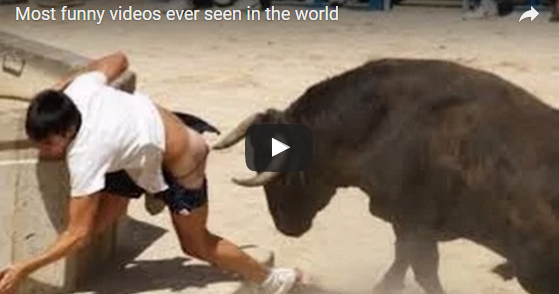 Most Funny Videos Ever Seen In The World Qq Malaysia Online
