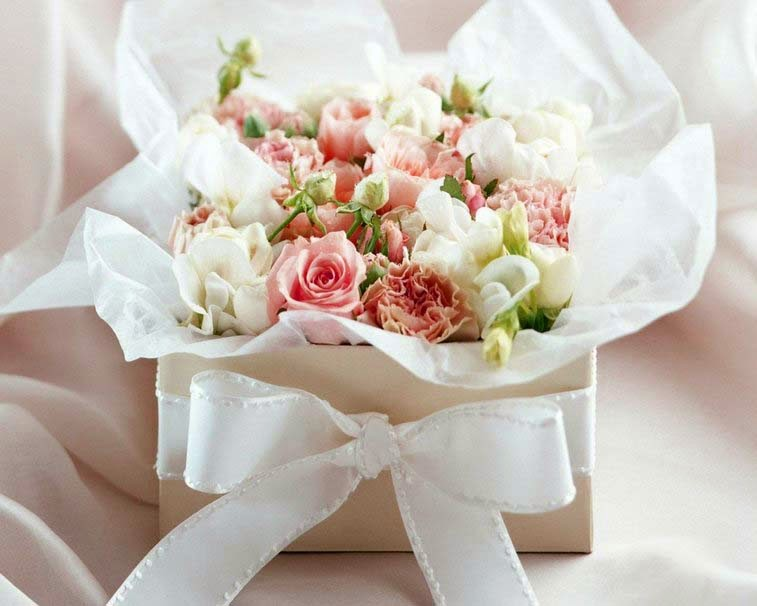 white-rose-flowers-love-image