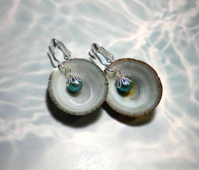 Del S Shells New Seashell Earrings