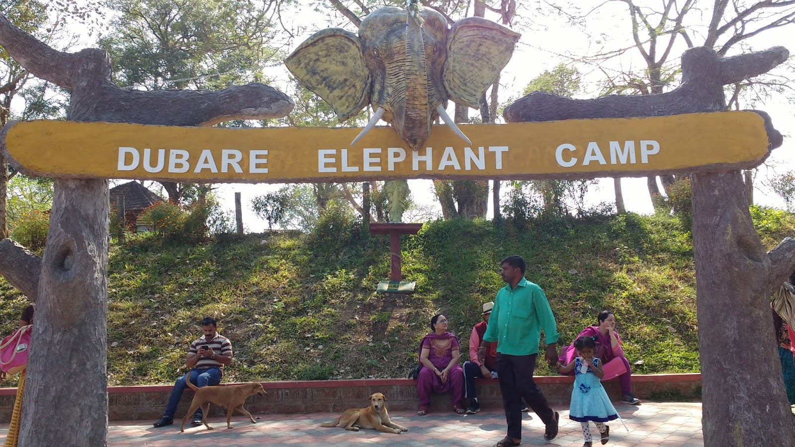 Image result for dubare elephant camp coorg