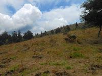 Sosok Dibalik Konservasi lingkungan Dataran Tinggi Dieng