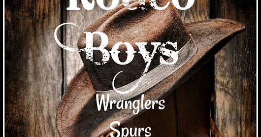 Rodeo Boys Series