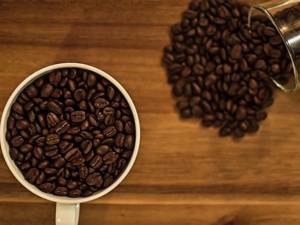 Aliments Interdits aux Chiens- Café