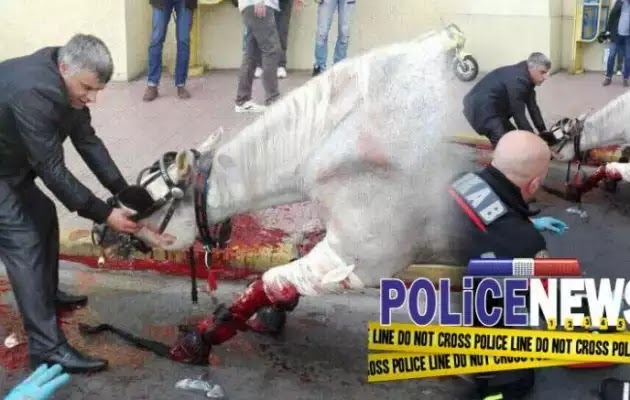 Ταξί συγκρούστηκε με άμαξα στο κέντρο της Αθήνας – Τραυματίστηκε σοβαρά ένα άλογο