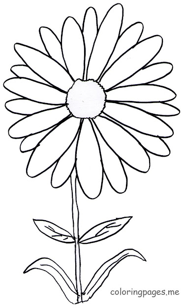 More Images Of Daisy Coloring Pages Posts
