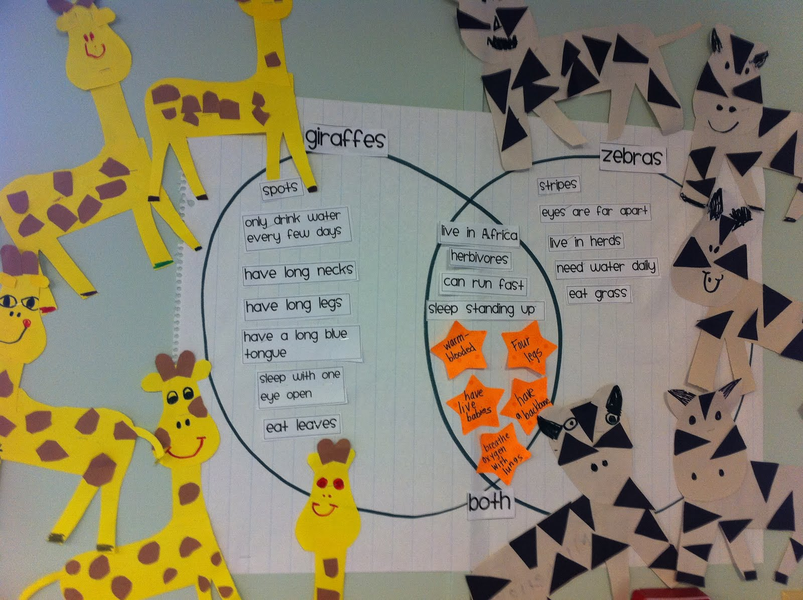 Our Teacher Asked What My Favorite Animal Was: The Adventures Of A K/1 Teacher: April 2011