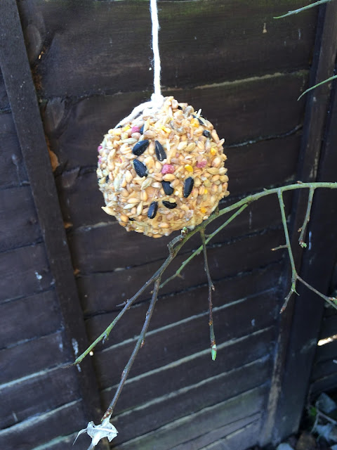 Apple covered in peanut butter and bird seed, hanging from a tree