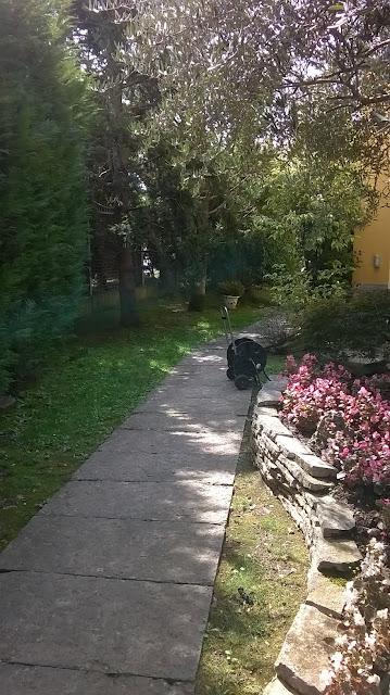 il vialetto del giardino della villa a mozzo via mozzi