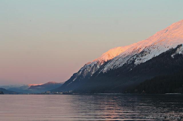 Sandra 39 s alaska photography january 2 2017 sport king for Juneau alaska fishing