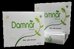 Alamat Stokis atau Distributor Regional Damnar Drink Indonesia PT DSI