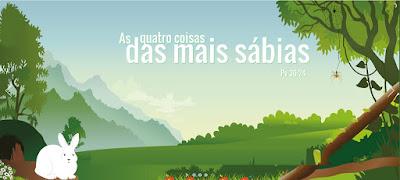 AS QUATRO COISAS DAS MAIS SÁBIAS - Provérbios 30:24-28