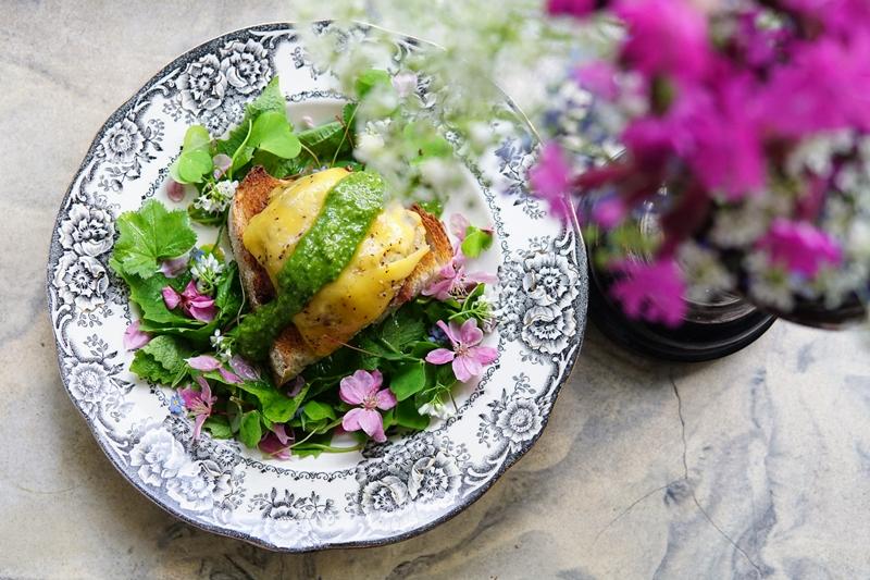 salaatti, villiyrtit, villivihannekset, hampurilainen
