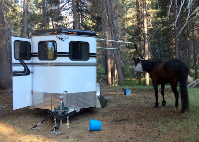 How to Go Horse Camping - Where to Keep Your Horse - High Tie