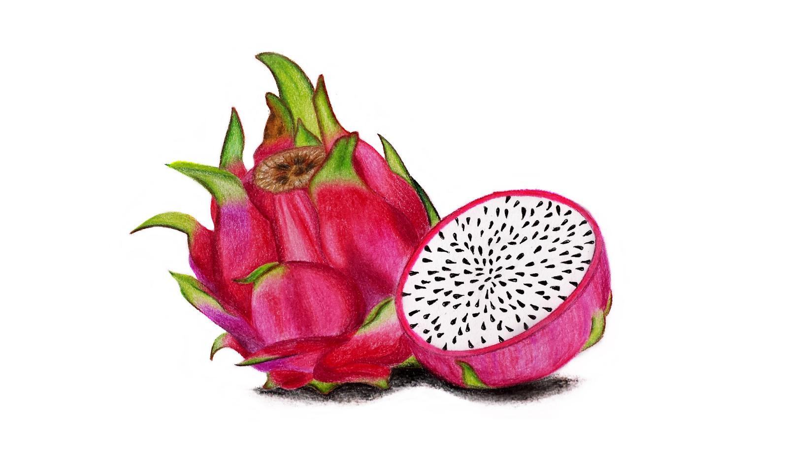 драконий фрукт картинки нарисовать совершить хоть одну