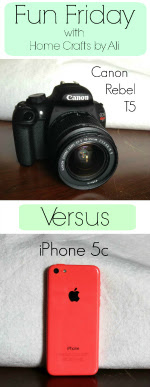 Home Crafts by Ali 2015 photography camera comparison cannon iphone