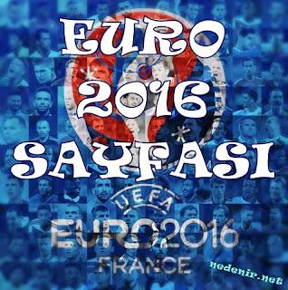 euro 2016 nedenir.net