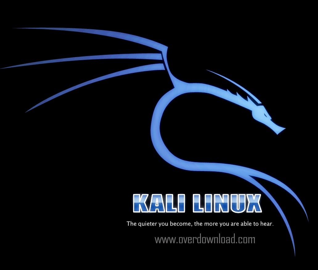 Download Kali Linux ISO 64 Bit and 32 Bit Free 2015