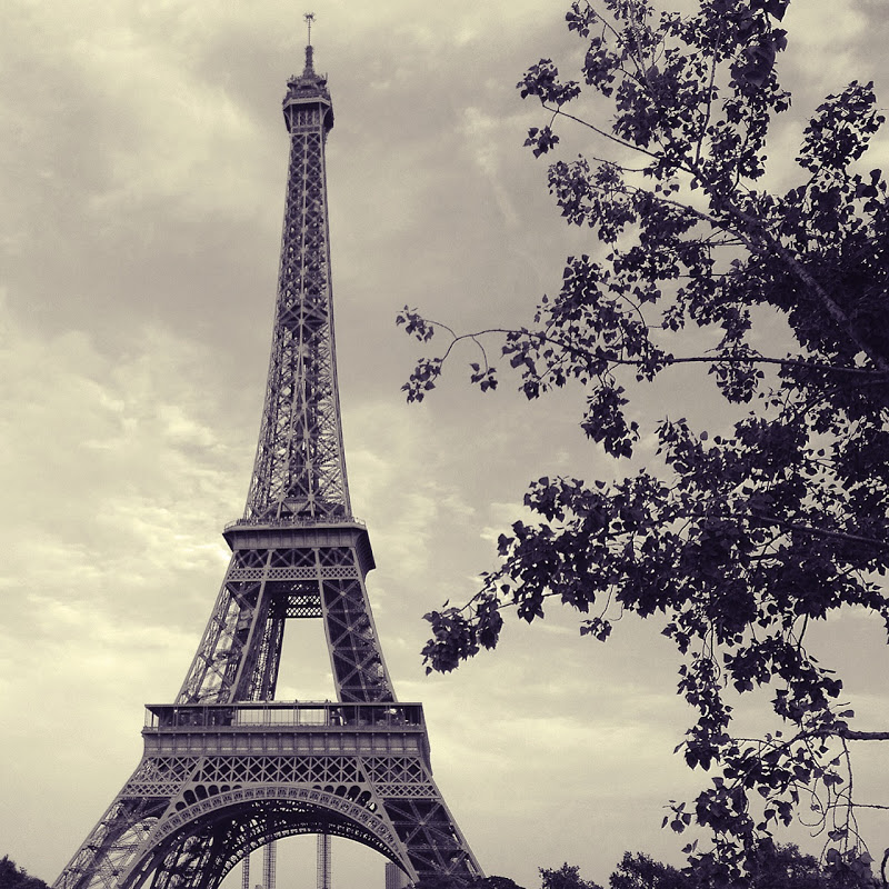 The 10 Things I Always Do In Paris: Tippytapp: I'll Always Love Paris