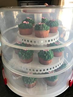 Storing Cupcake Carrier