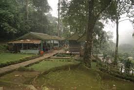 Segarnya Udara Hutan Pinus Nglimut