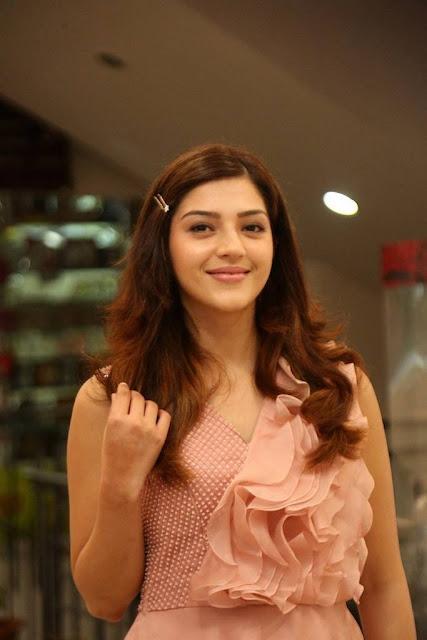 Mehreen Kaur Pantham Movie Success Meet Stills