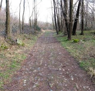 strada-medievale-brianza-visconti