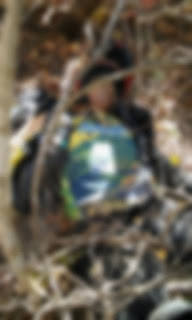Motociclista morre em acidente próximo a Coronel Ezequiel