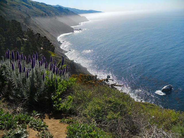 Big Sur California Highway No 1