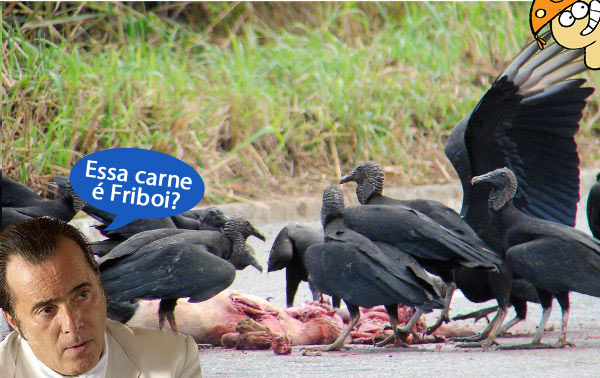 Resultado de imagem para carne podre jbs
