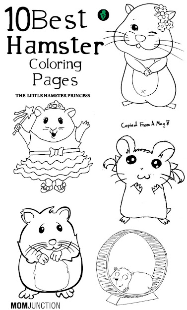 Best Hamster Coloring Pages Your Toddler Will Love To Color