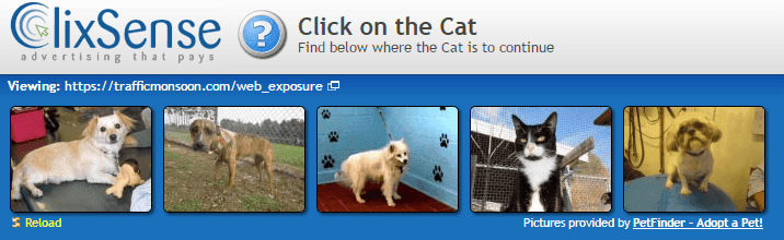 Click the cat image inorder to make your click valid