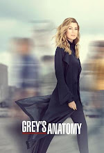 Greys Anatomy 16ª Temporada (2019) Torrent Legendado e Dublado