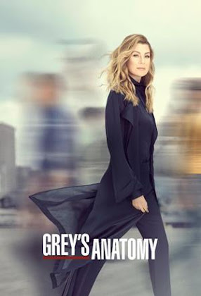 Greys Anatomy Torrent