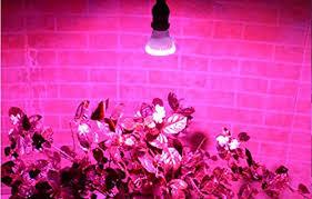 www.indooragarden.com
