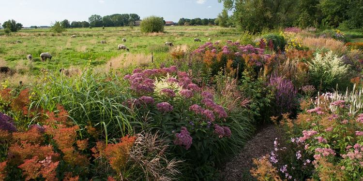 Jardines Naturalistas Para Soñar Garten Moorriem En Alemania