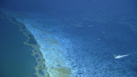 Danau Di Bawah Laut Ini Sangat Beracun