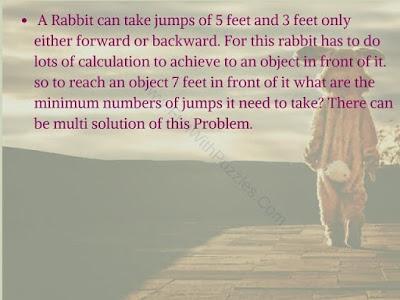 Rabbit Brain Cracker Puzzle