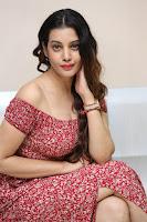 Diksha Panth in a Deep neck Short dress at Maya Mall pre release function ~ Celebrities Exclusive Galleries 037.JPG