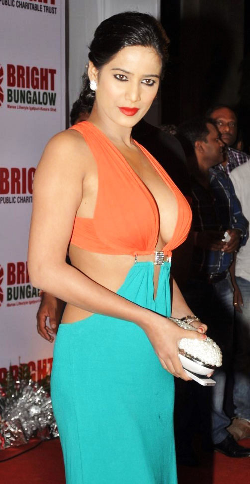 Poonam Pandey poses for the cameras at Yogesh Lakhani's Birthday Party, Poonam Pandey in gown, Poonam Pandey poses for the cameras at Yogesh Lakhani's Birthday Party cleavage show