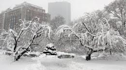 أقوى العواصف الثلجية في التاريخ