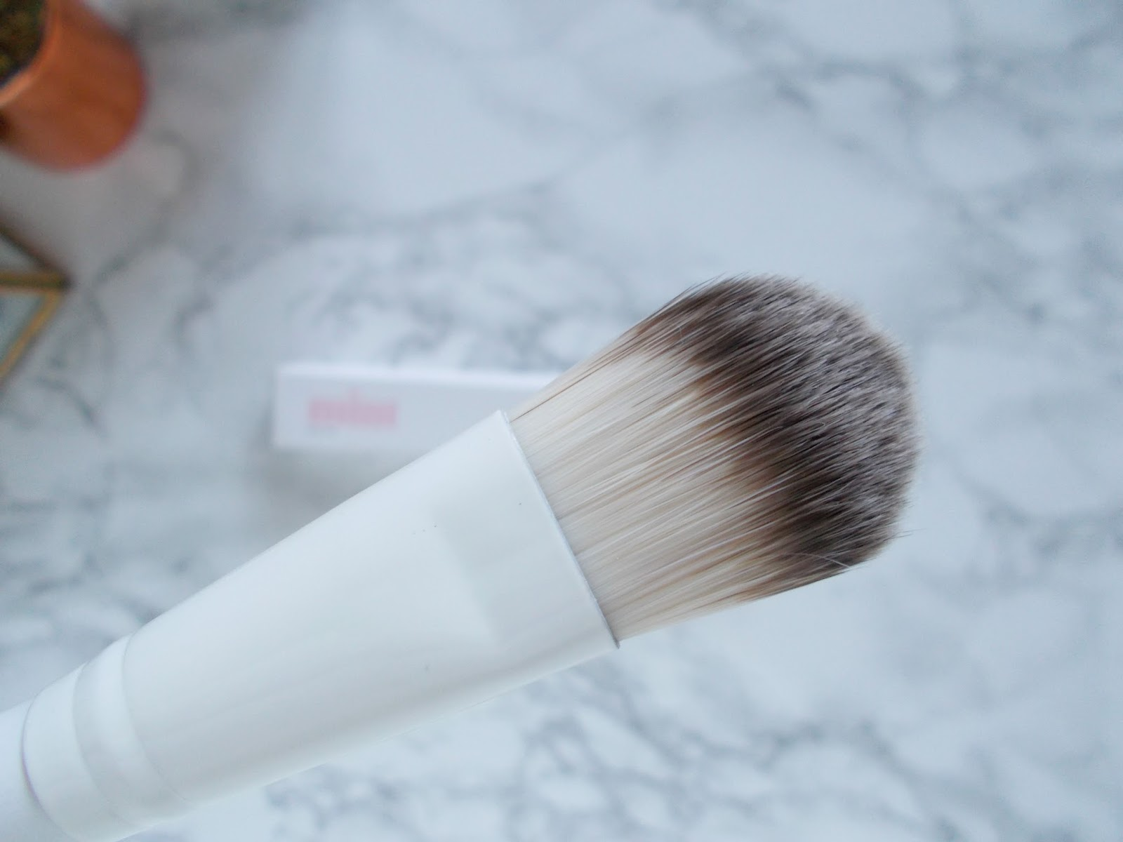 mint skin applicator brush review