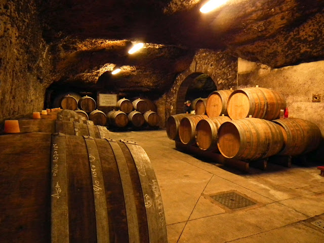 On your tour of the Loire Valley learn how wine is made and vintaged