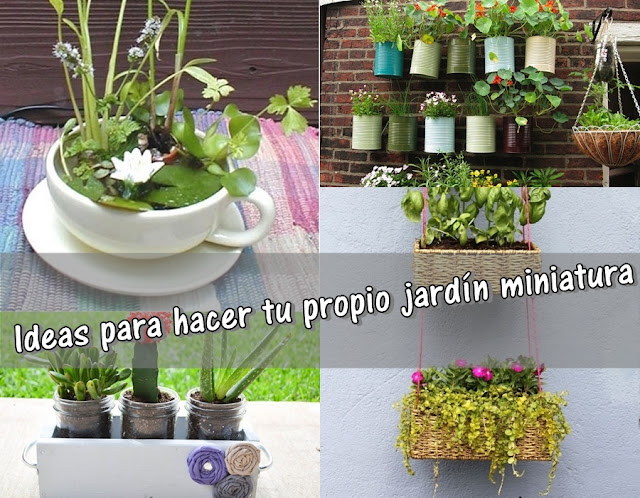 Entre plantas y macetas Ideas para hacer tu propio jardn miniatura