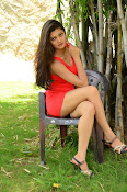 Poojitha sizzling in red dress-thumbnail-20
