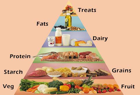 Diet Food Pyramid Myadran Info