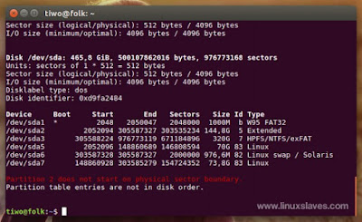 Linux show physical disks terminal
