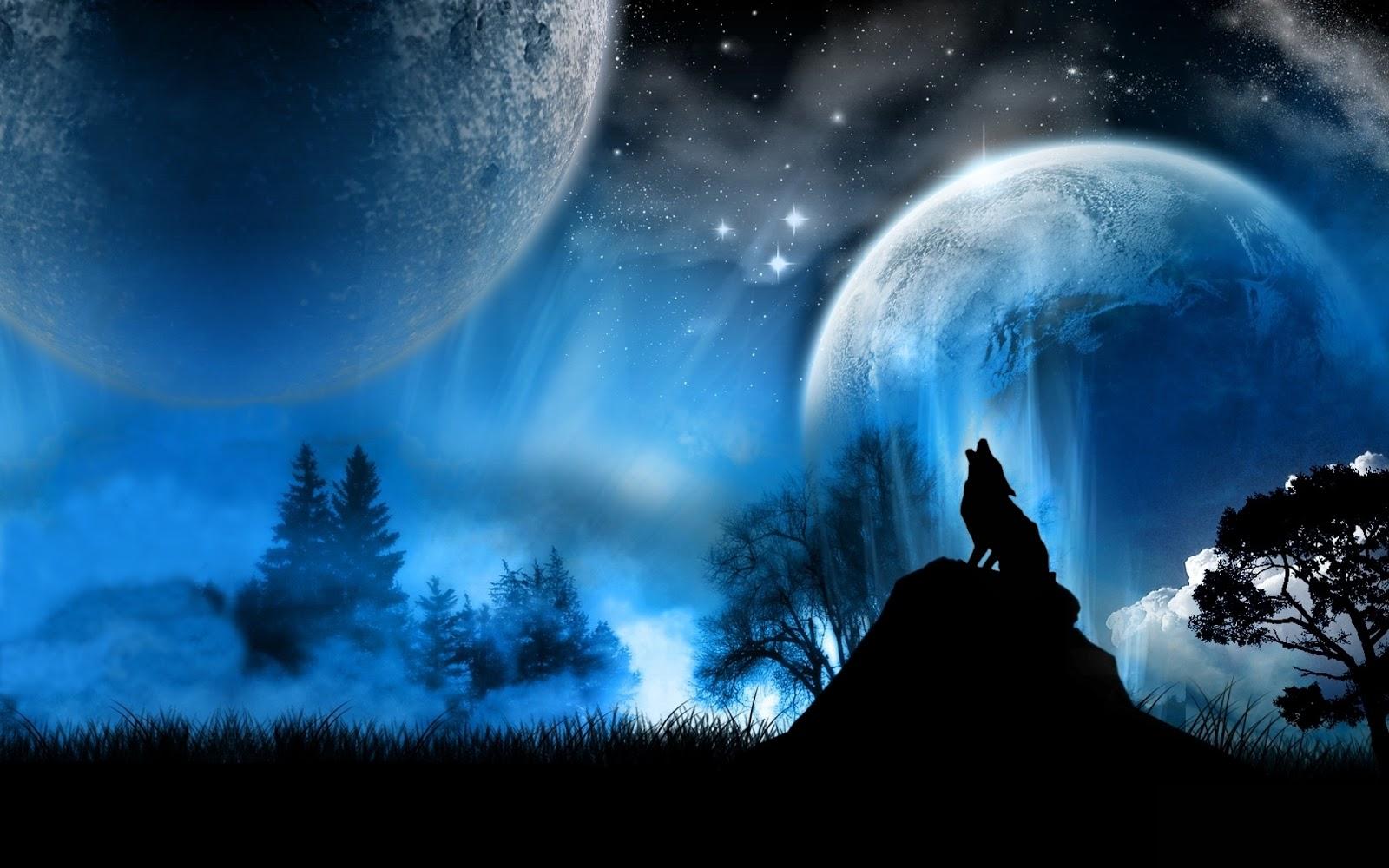 Hq wallpapers 3d wolf photos - 3d anime wallpaper ...