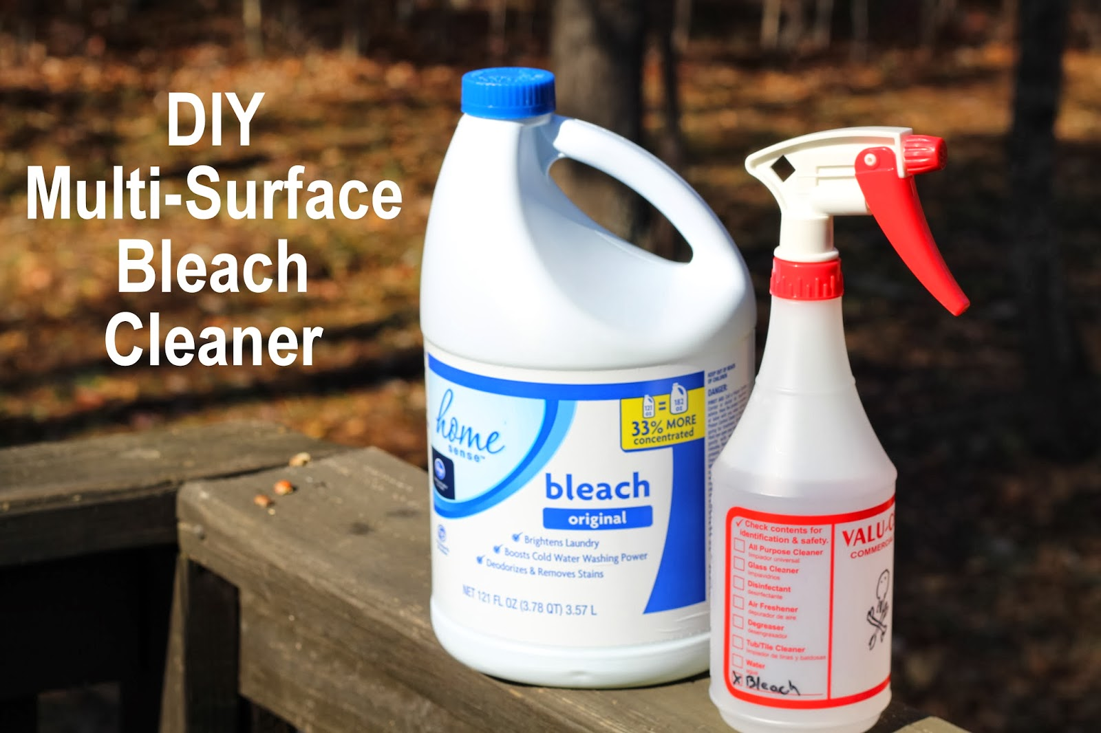 My So-Called (Mommy) Life: DIY Multi-Surface Bleach Cleaner