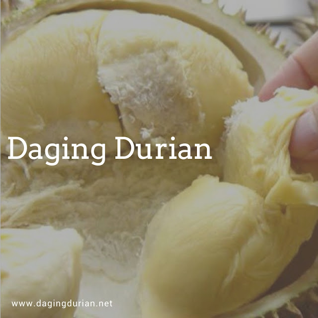 jual-daging-durian-medan-terlegit-di-pamekasan