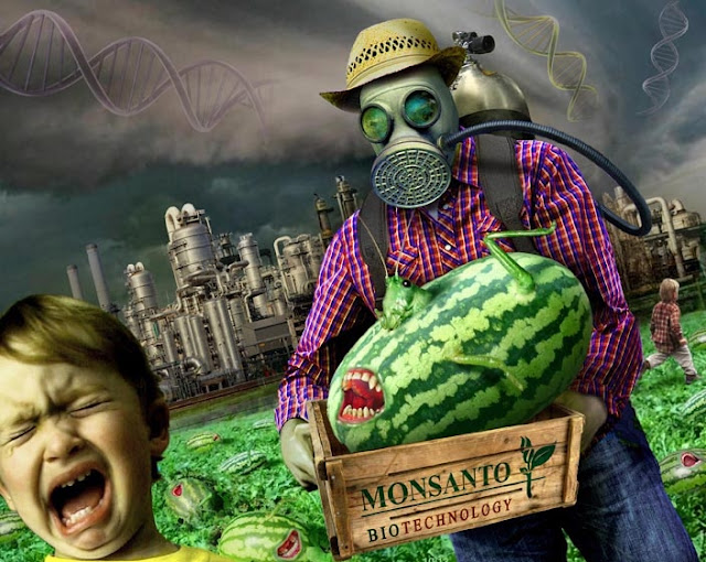 Monsanto, Roundup, Michell, Michell Hilton, Michell blogue
